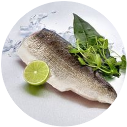 Frozen Whitefish Fillets